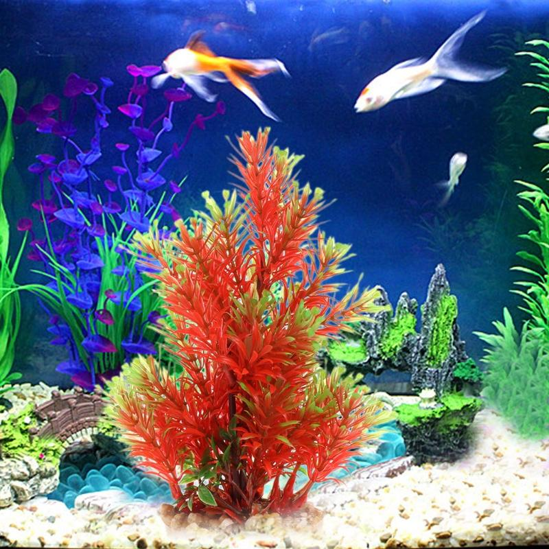 Aquatic plant plastic transparent stone fish tank aquarium for Aquatic decoration