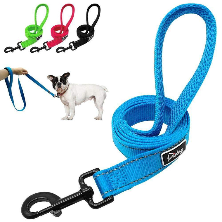 Didog Reflective Dog Leash Night Safety Dogs Walking Outdoor Training Walking Leads With Soft Handle for Small Medium Breeds