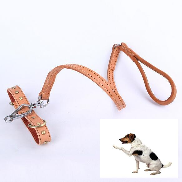 Durable Genuine Leather Dog Studded Collar Leash Pet Outdoor Walking Training Leads Adjustable Buckle Strap
