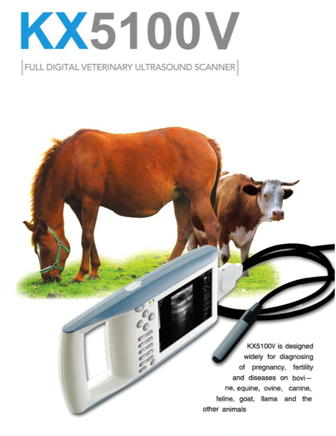 KX5100V and Rectal Arm - VET EQUIPMENT - 9