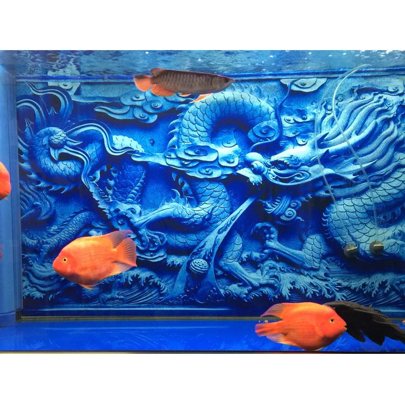Aquarium background chinese dragon cameo print for fish for Asian fish tank decorations