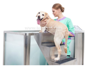 Micro Bubble Dog Spa Tub