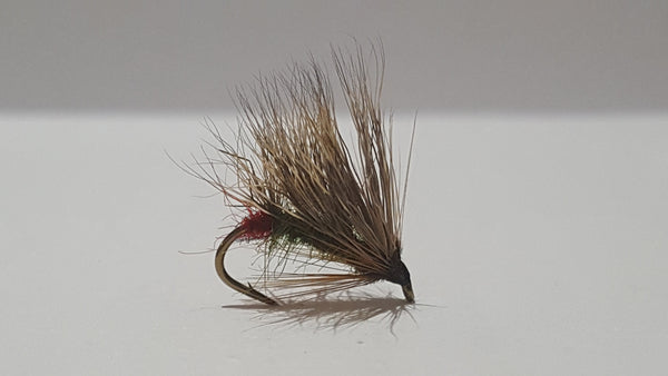 Sedgehog Green Peter (Red Assed) Fly