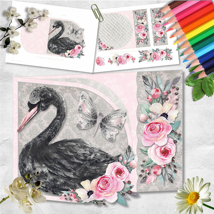 Black Swan D Flap Card