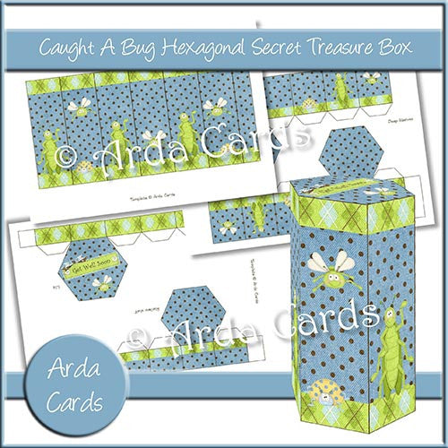 Caught A Bug Hexagonal Secret Treasure Box - The Printable Craft Shop