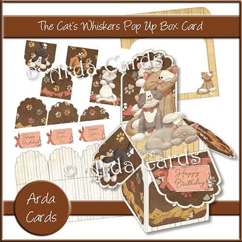 The Cat's Whiskers Pop Up Box Card