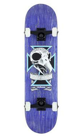 Birdhouse Level 3 Skull 2 Skateboard 7.75""