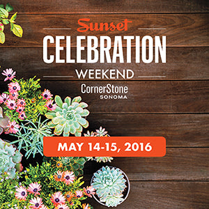 sunset-celebration-weekend-2016
