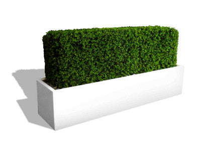Narbonne Fiberglass Rectangular Planter Box