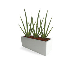 Tupelo Fiberglass Rectangle Planter