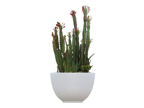 Kathryn Tapered Square Fiberglass Planter