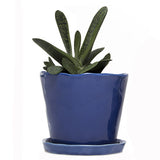 "Big Tika 5"" Ceramic Succulent Pot -  - 3"