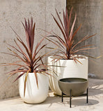 Modernica Case Study® Ceramic Bullet Pot Planter with Stand - gardenmybalcony.com - 5