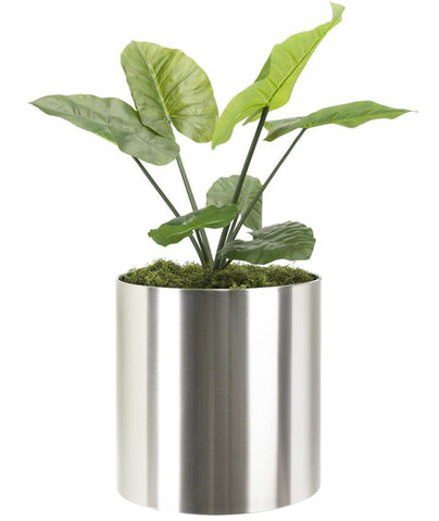 NMN Designs KnoxMod Cylinder Heavy Duty Planter