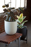 Modernica Case Study® Ceramic Bullet Pot Planter with Stand - gardenmybalcony.com - 8