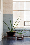 Modernica Case Study® Ceramic Wok Pot Planter - Small - gardenmybalcony.com - 1