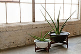 Modernica Case Study® Ceramic Wok Pot Planter - Large - gardenmybalcony.com - 1
