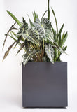 NMN Designs Seeley Cube Planter