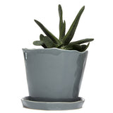 "Big Tika 5"" Ceramic Succulent Pot -  - 7"