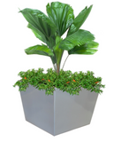 Bergen Tapered Square Fiberglass Planter