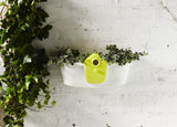 Elho Birdgarden Wall Planter - gardenmybalcony.com - 1