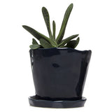 "Big Tika 5"" Ceramic Succulent Pot -  - 5"