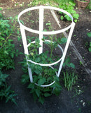 NMN Designs Heavy Duty Tomato Tower - gardenmybalcony.com - 2