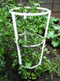 NMN Designs Heavy Duty Tomato Tower - gardenmybalcony.com - 1