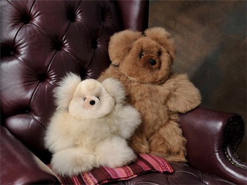 Teddy Bears - 5.5""
