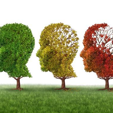 Alzheimer's & Dementia Awareness Month - Part 2: Alzheimer's Disease