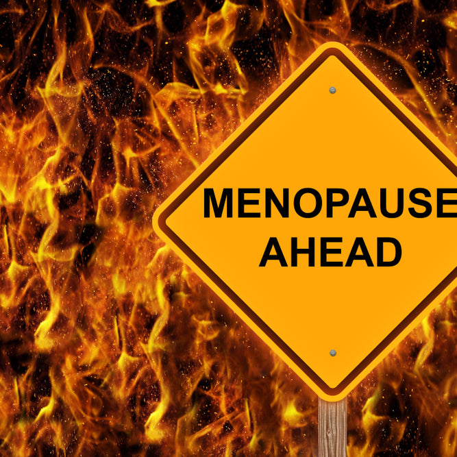 Understanding Menopause & Hot Flashes