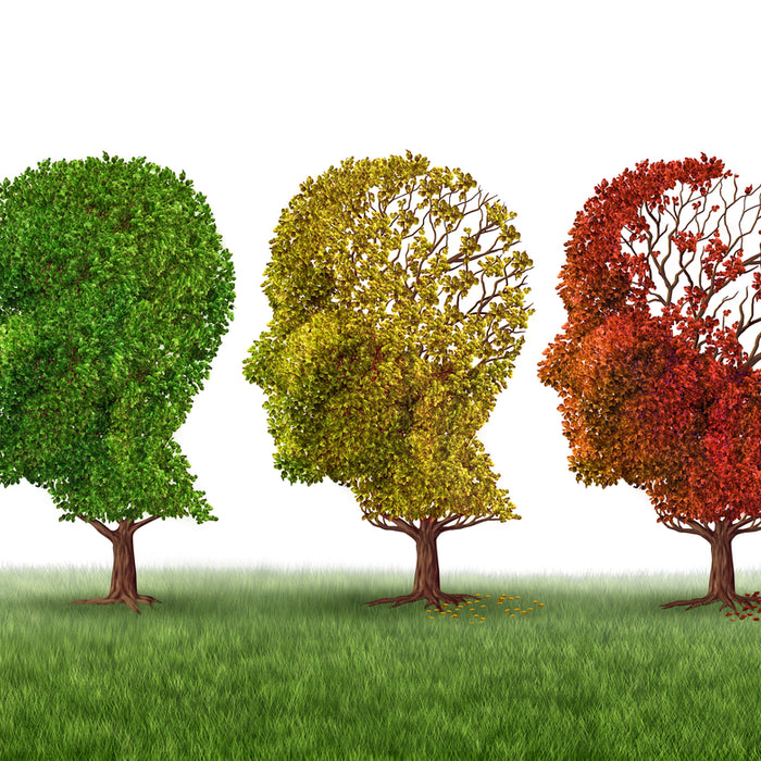 Brain Awareness Month: Coping with Alzheimer's Disease