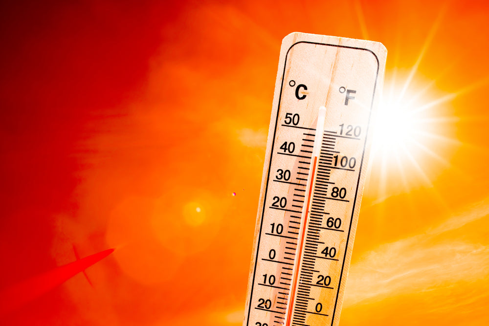 Fourth of July Heat Stroke Extreme Heat Safety