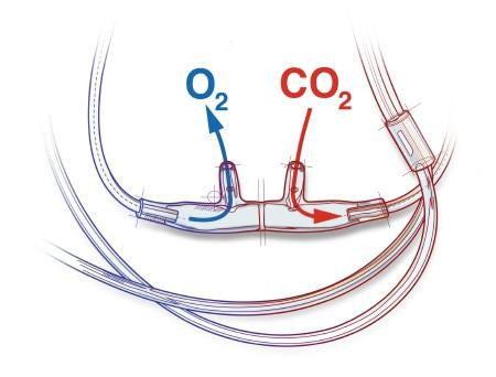 Nasal Cannula ETCO2 Sampling Simultaneous O2 CO2 & O2 Lines - Nasal Cannulas - Mountainside Medical Equipment