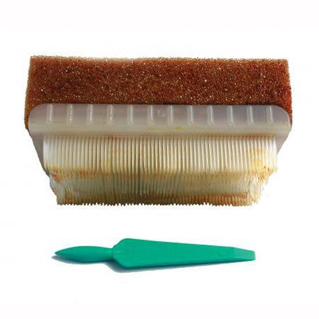 BD EZ Surgical Scrub Brush with Povidone Iodine 30/bx - Operating Room Supplies - Mountainside Medical Equipment