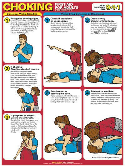 Choking First Aid Instructional Poster Laminated 18 X 24