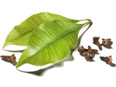 Buy Natural Clove Leaf Oil used for Vitamins, Minerals & Supplements by Lorann Oils