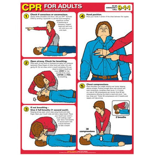 CPR Instructional Poster Laminated 18 X 24