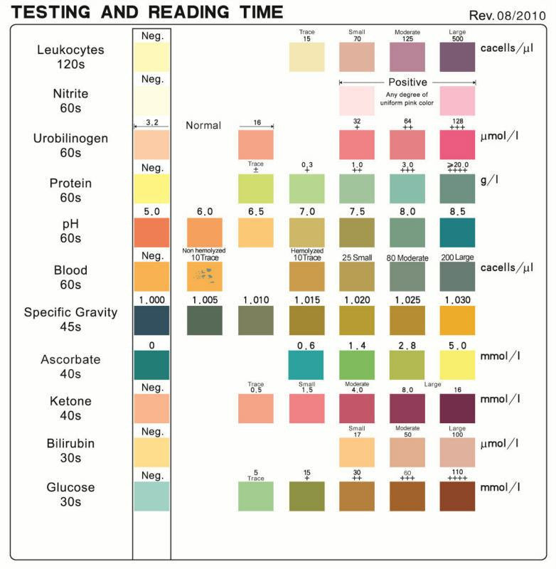 10 SG Urine Test Strips for Urinalysis – Sample Urine Color Chart