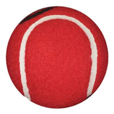 Red Tennis Ball Walker Glides 1 Pair