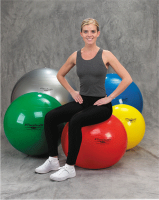 Buy Thera-Band Exercise Balls used for Physical Therapy by Fabrication Enterprises