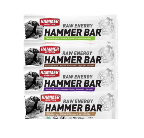 Hammer Energy Bar Sampler - Hammer Nutrition Canada