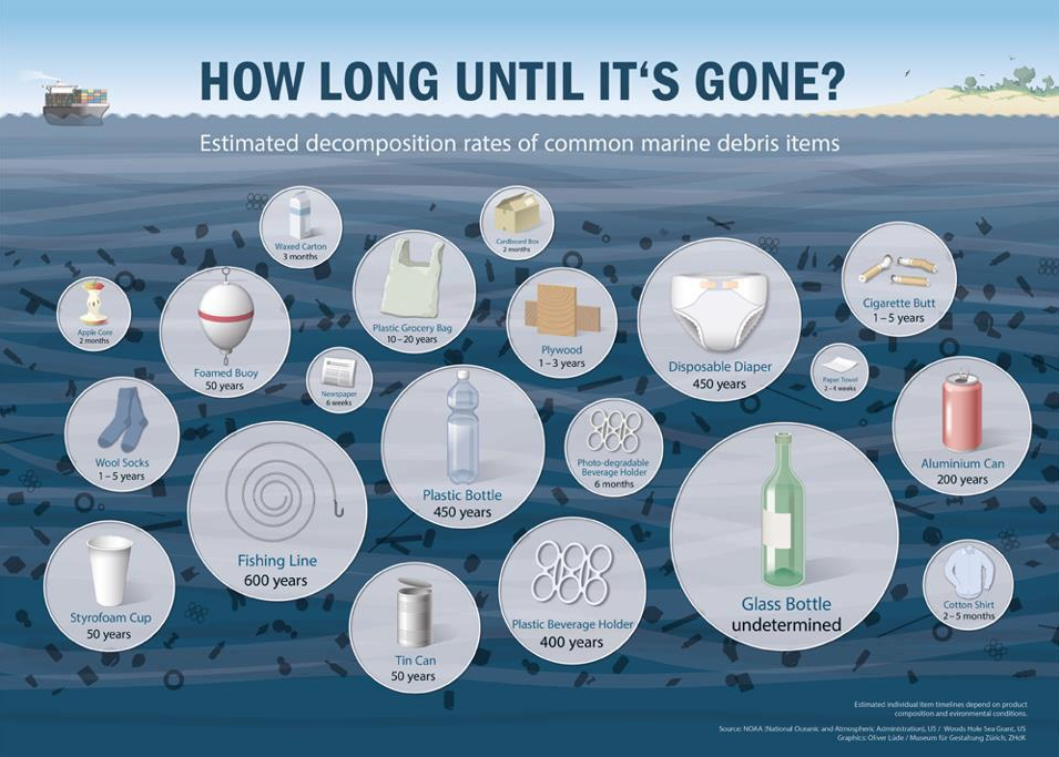 How Long Does it Take Trash to Decompose
