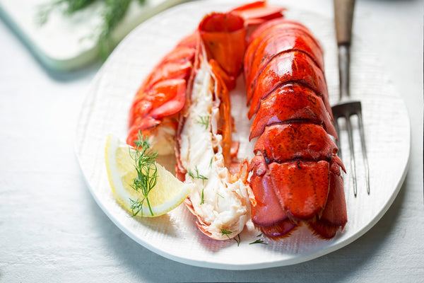 Lobster Shells May Help Replace Plastic