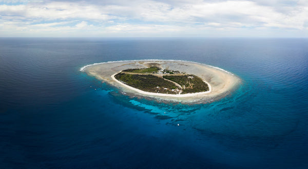 Lady Elliot Island - Great Barrier Reef