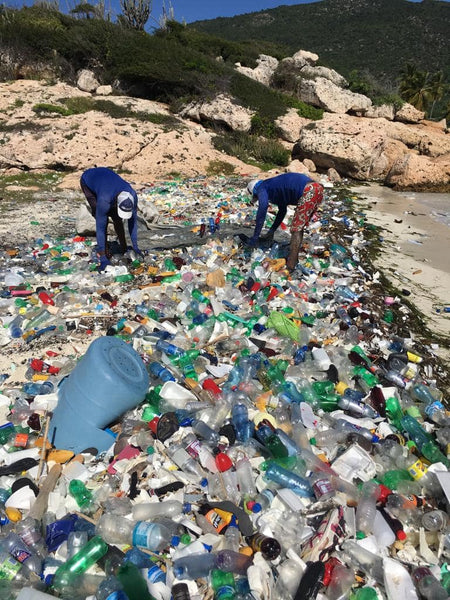4ocean Employees Collecting Ocean Plastic Pollution