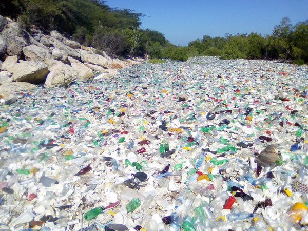 Massive Amount of Plastic Pollution