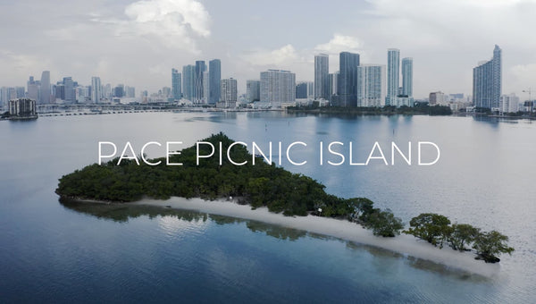 4ocean Bracelets - 4ocean Miami-Dade Cleanup at Pace Picnic Island