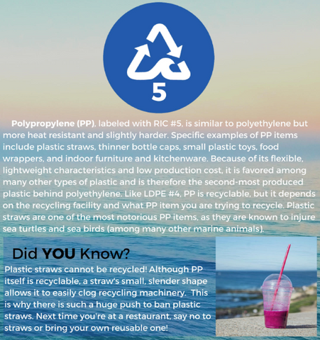4ocean Education - Polypropylene