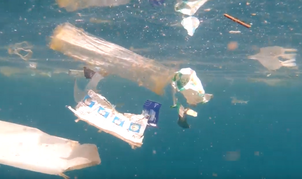 4ocean GoPro Trash in the Ocean